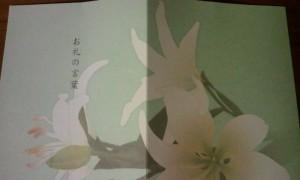 2012-02-15_230602.jpg