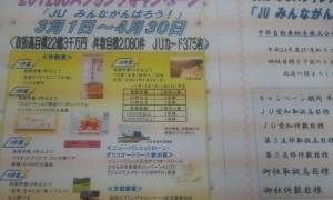2012-02-24_202507.jpg