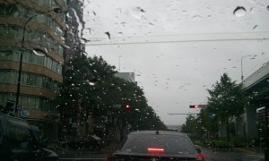 2012-06-19_154943.jpg